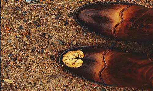 К чему снятся ботинки: толкование сна про